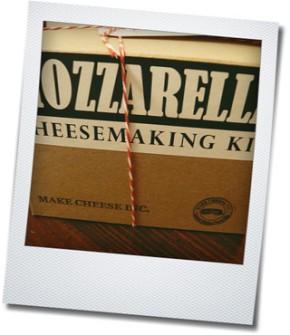 mozzarella kit